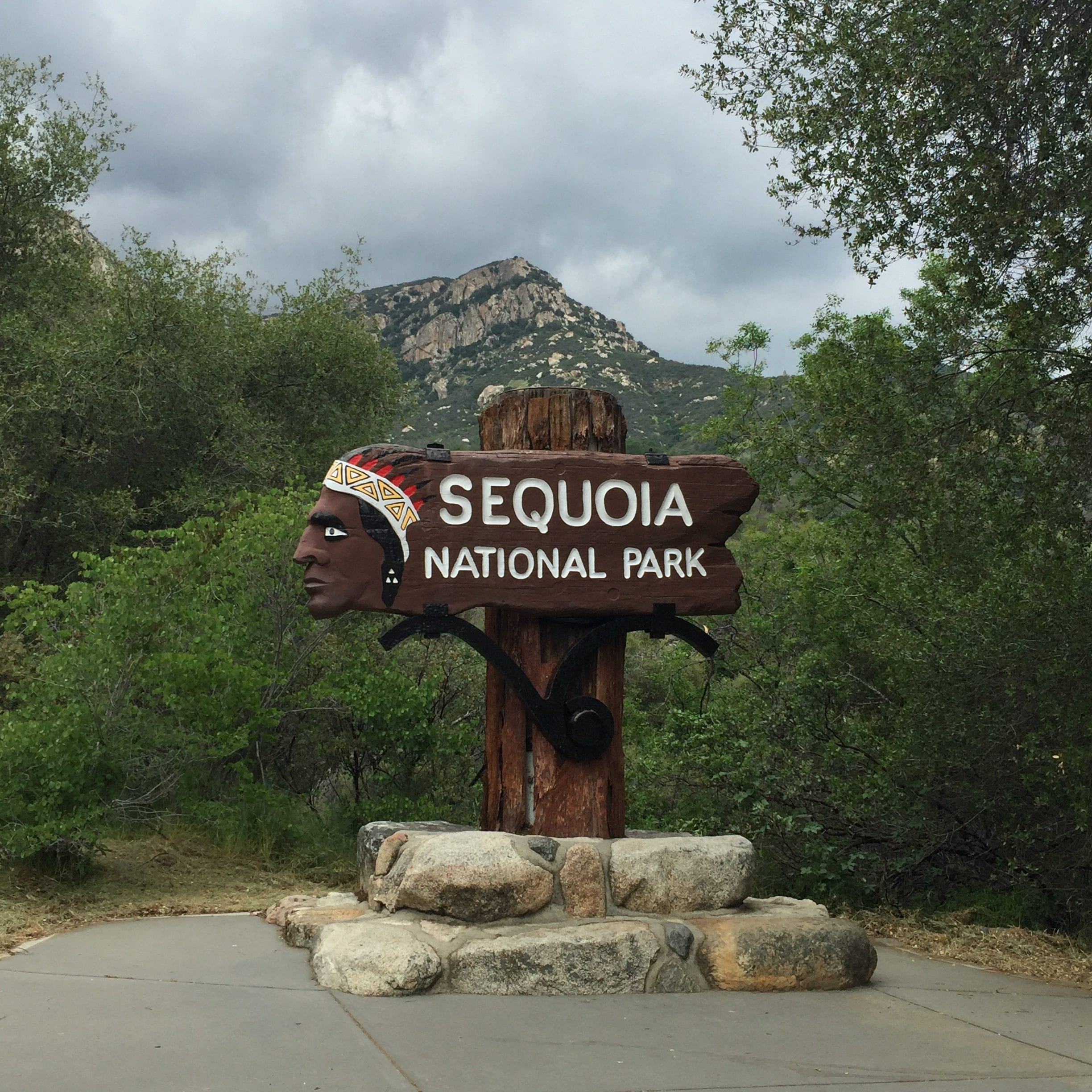 Californication: Sequoia National Park – wo die hohen Bäume stehen