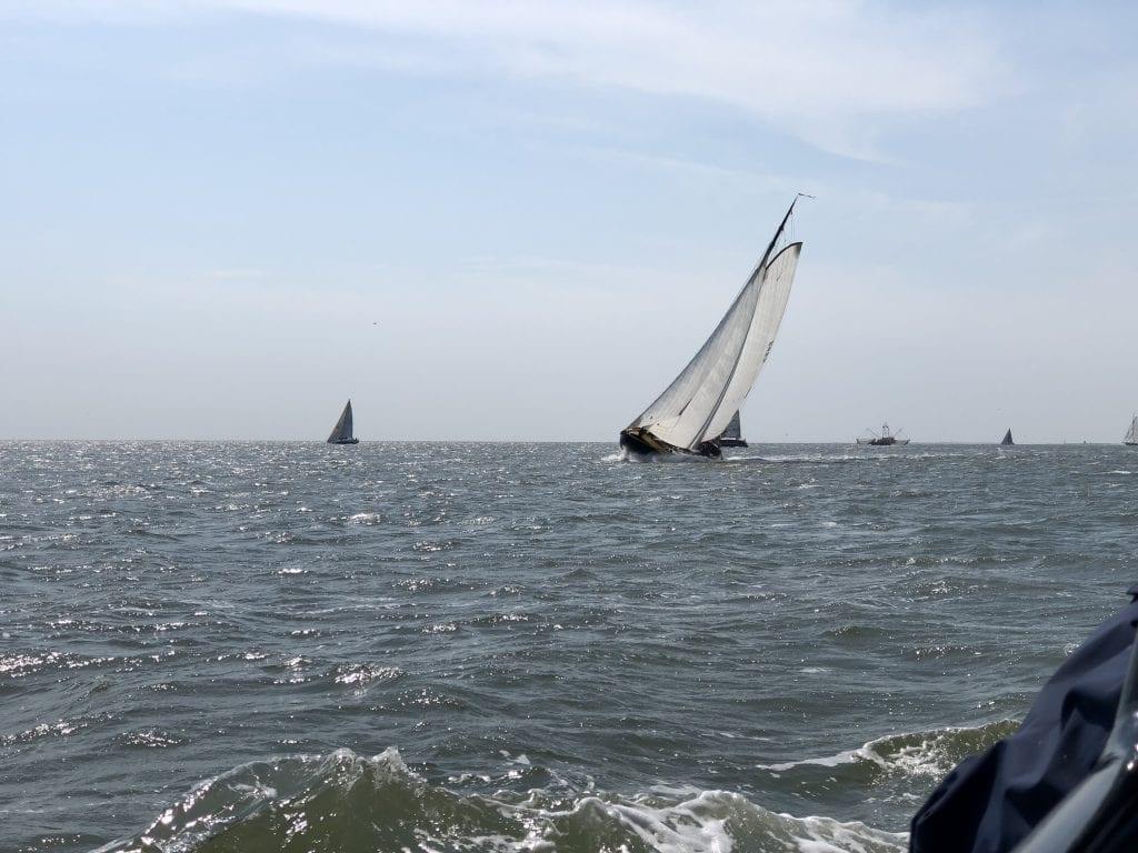 Plattbodenschiffe beim Regattasegeln auf dem Wattenmeer