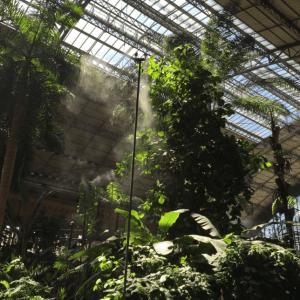 Jardines Tropicales de Atocha