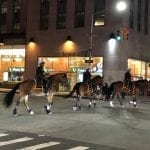 New_York_NYPD-Horses