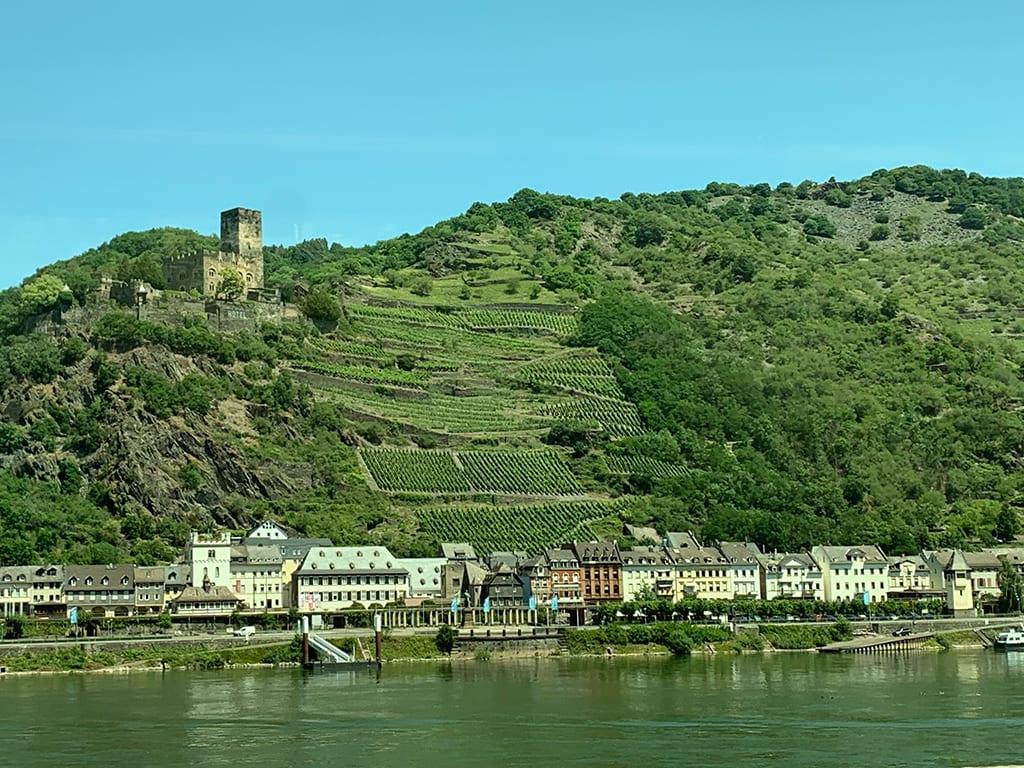 Burgruine am Rhein