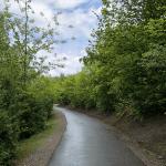 Aufstieg zur Halde Beckstraße